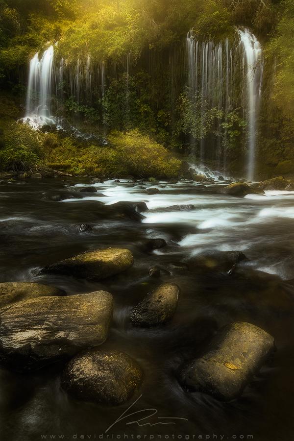 Emerald Beauty by davidrichterphoto