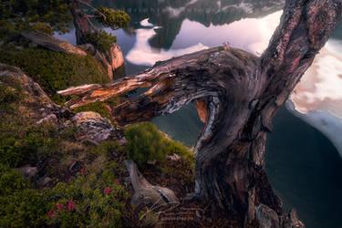 Puzzled  - Aiguestortes National Park, Spain