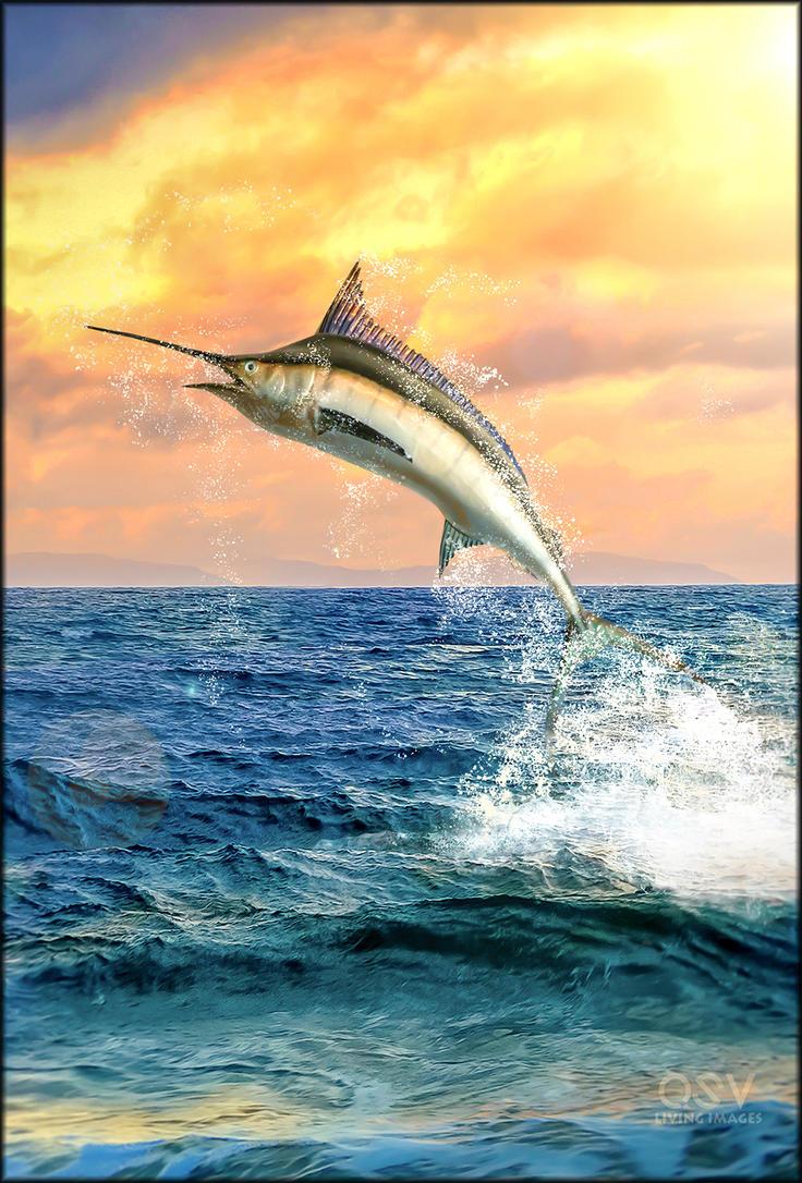Swordfish by Edgeley