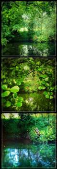 Green Cantabria