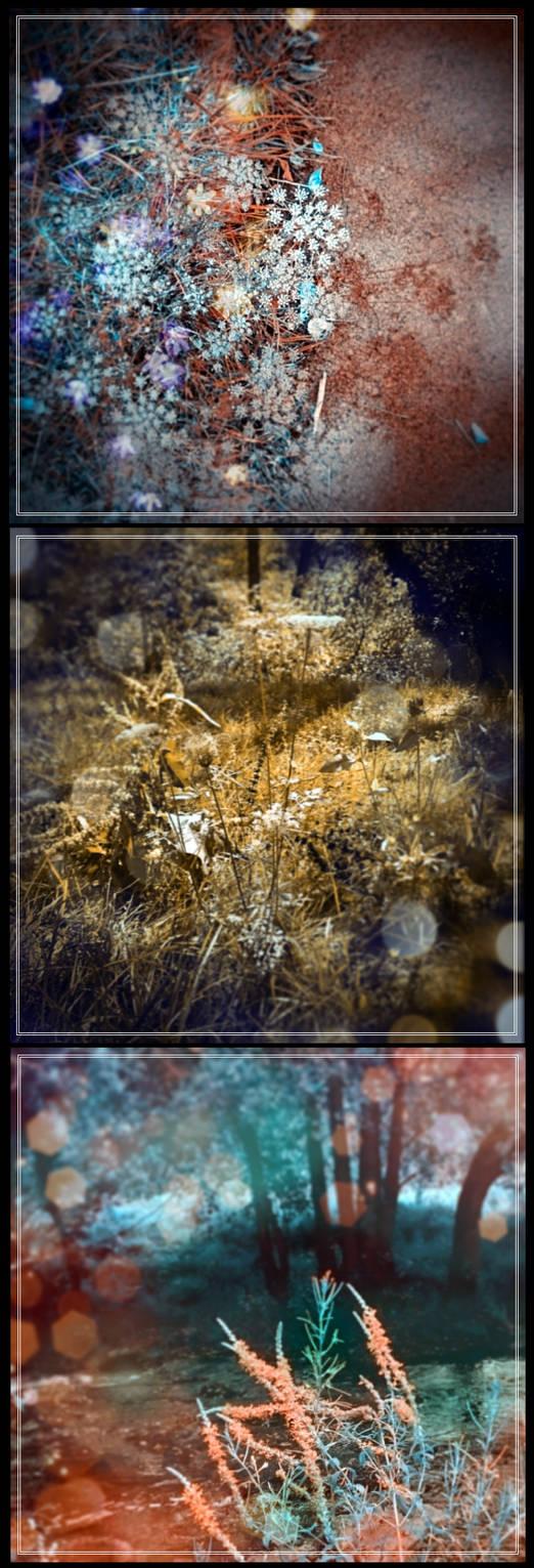 Arrigorriaga Hidden Beauty