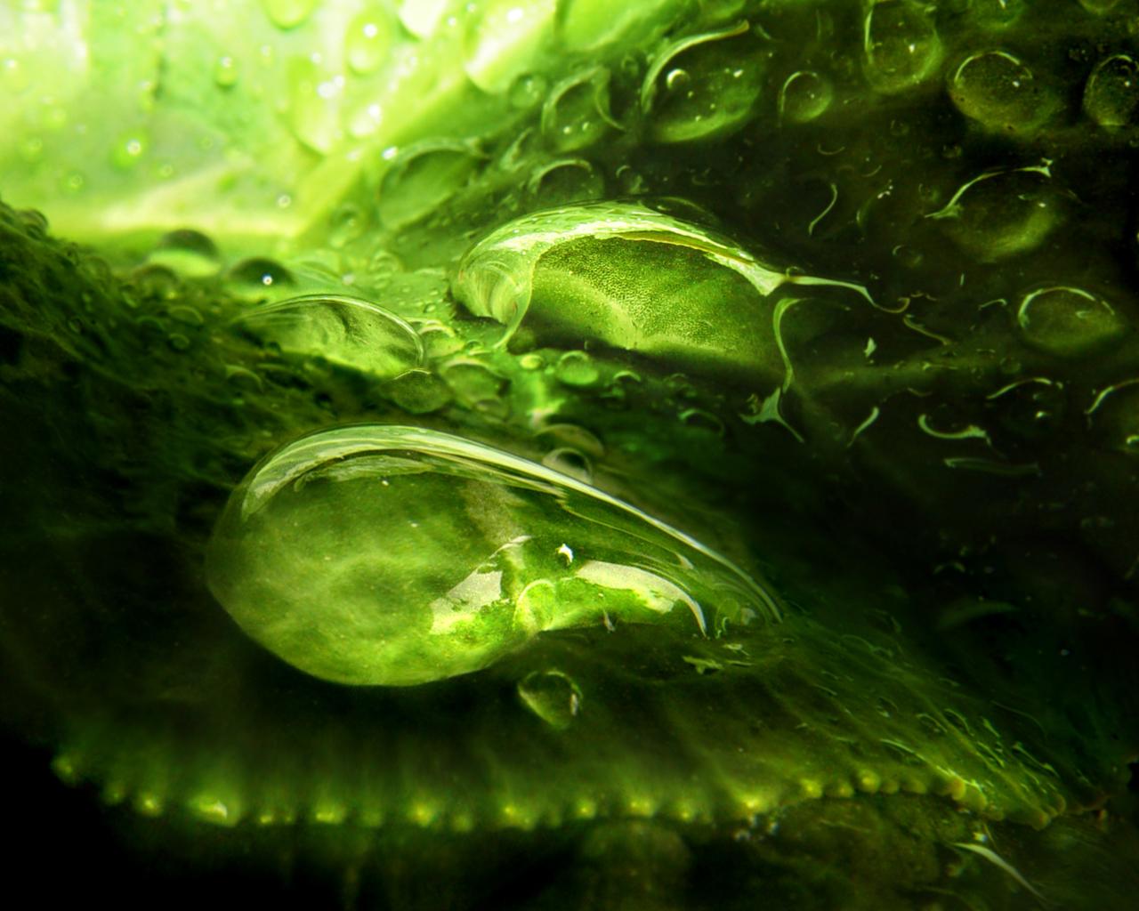 devian art mountains greenry nature secret mountains windows vista wallpaper