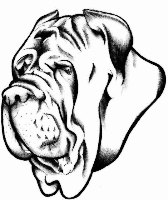 Neapolitan Mastiff by ErickEatsChildren on DeviantArt