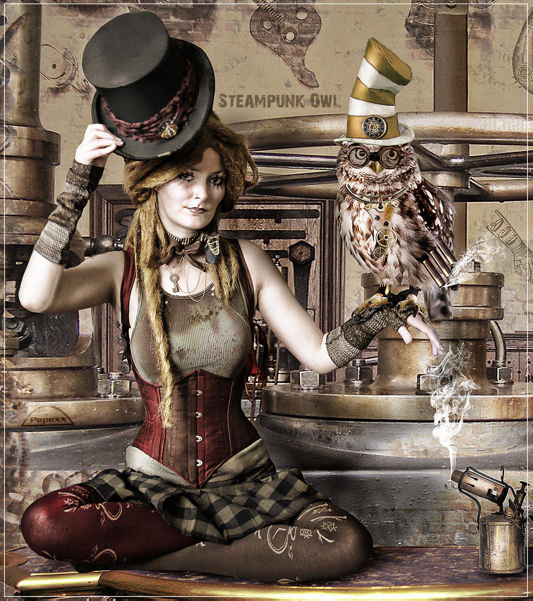 Steampunk Owl By Pepexx On Deviantart
