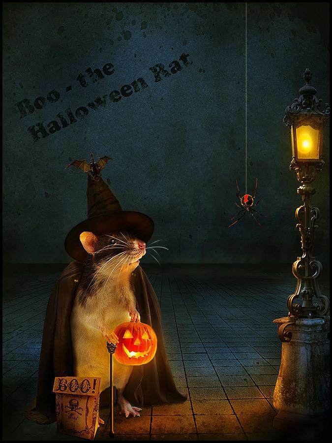 Happy Halloween by pepexx