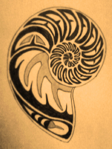 Nautilus Shell Design by TheMajesticCarnival
