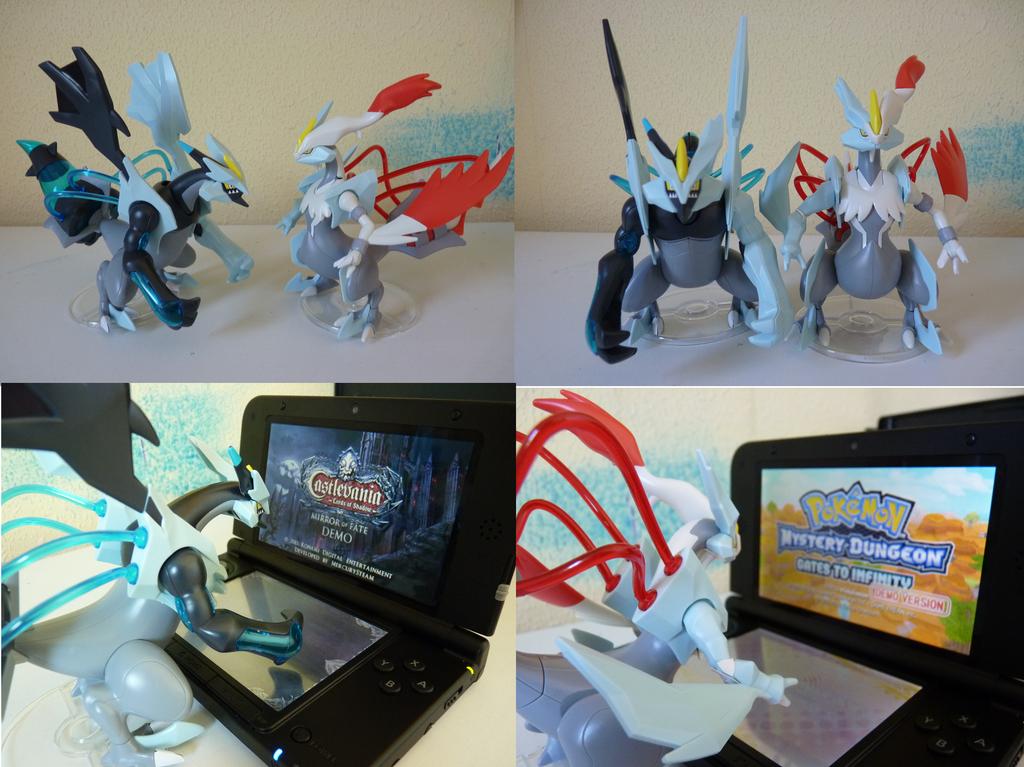 how to get white kyurem in pokemon white