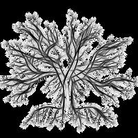 Frozen Night Symbolic Logo 2