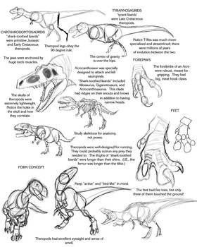 Theropod Tutorial