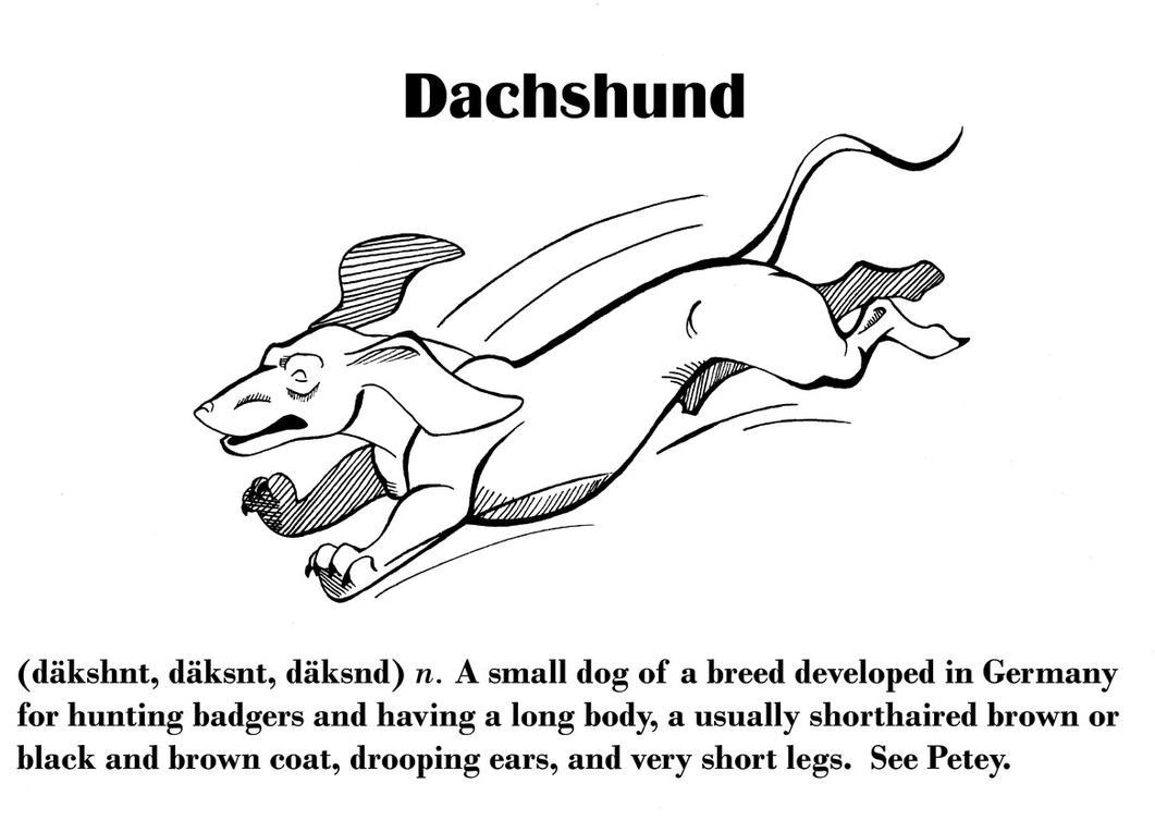 definition of a dachshund by droemar on deviantart