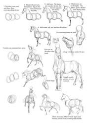Horse Tutorial by Droemar