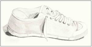 Springcourt shoe