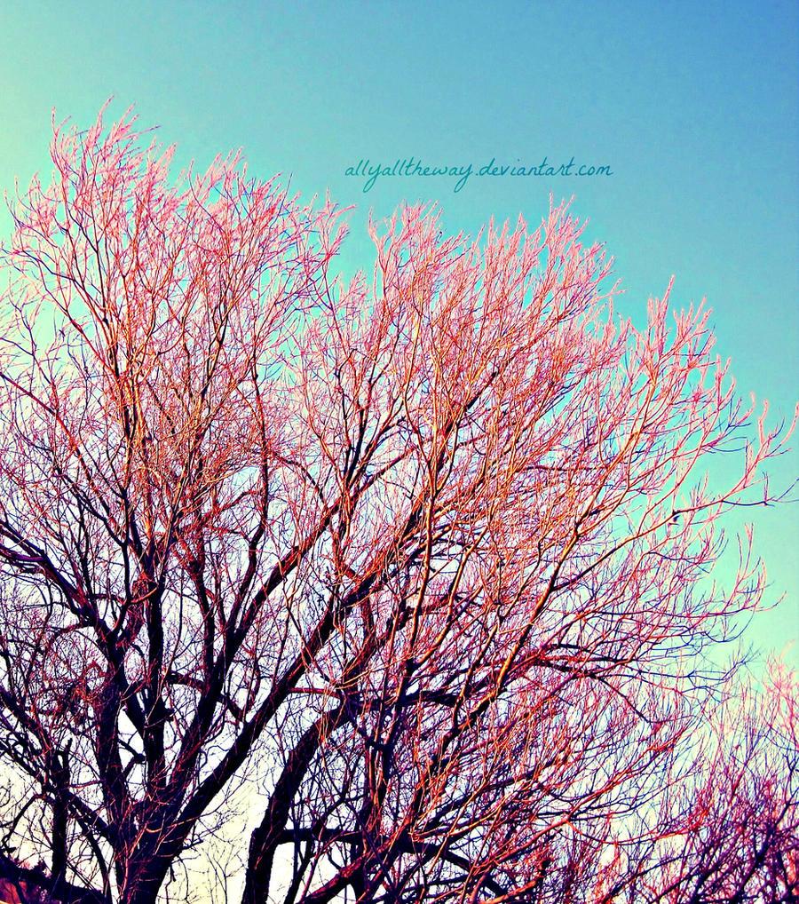 Pink by allyalltheway