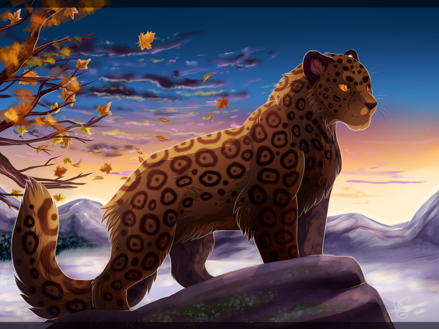 It's my kingdome by Fur-kotka