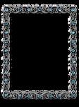 DiZa frames 11