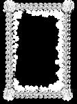 DiZa frames 15