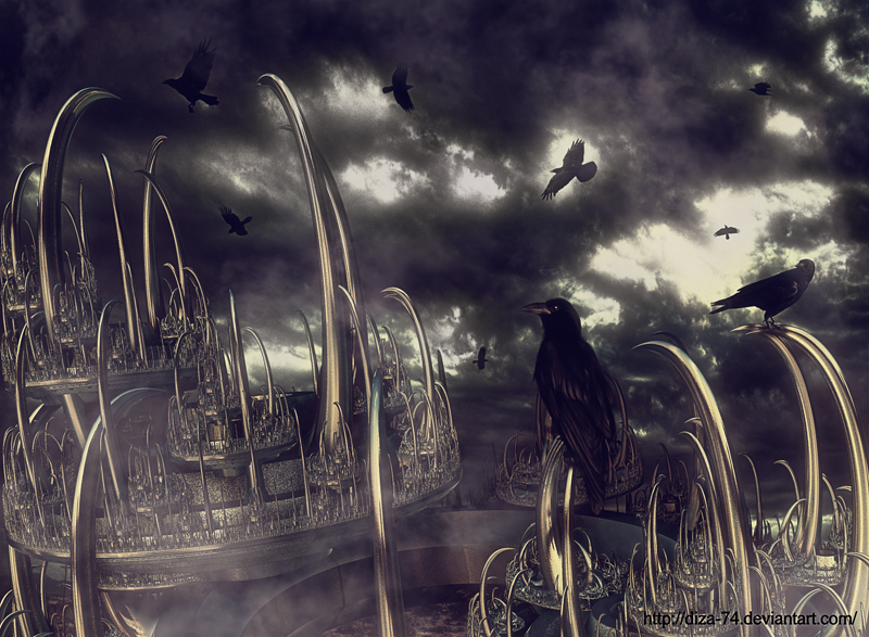 Crows by DiZa-74