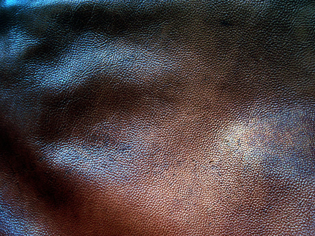leather texture - 2 by DiZa-74