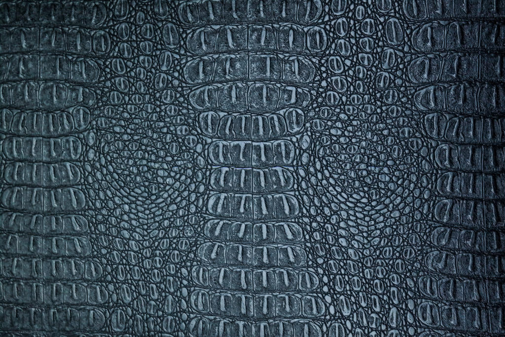 Crocodile skin by DiZa-74