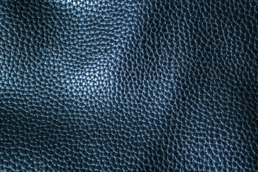 leather texture by DiZa-74