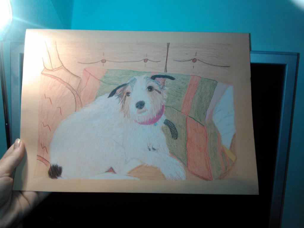 Realistic Doggy by SashaKpp