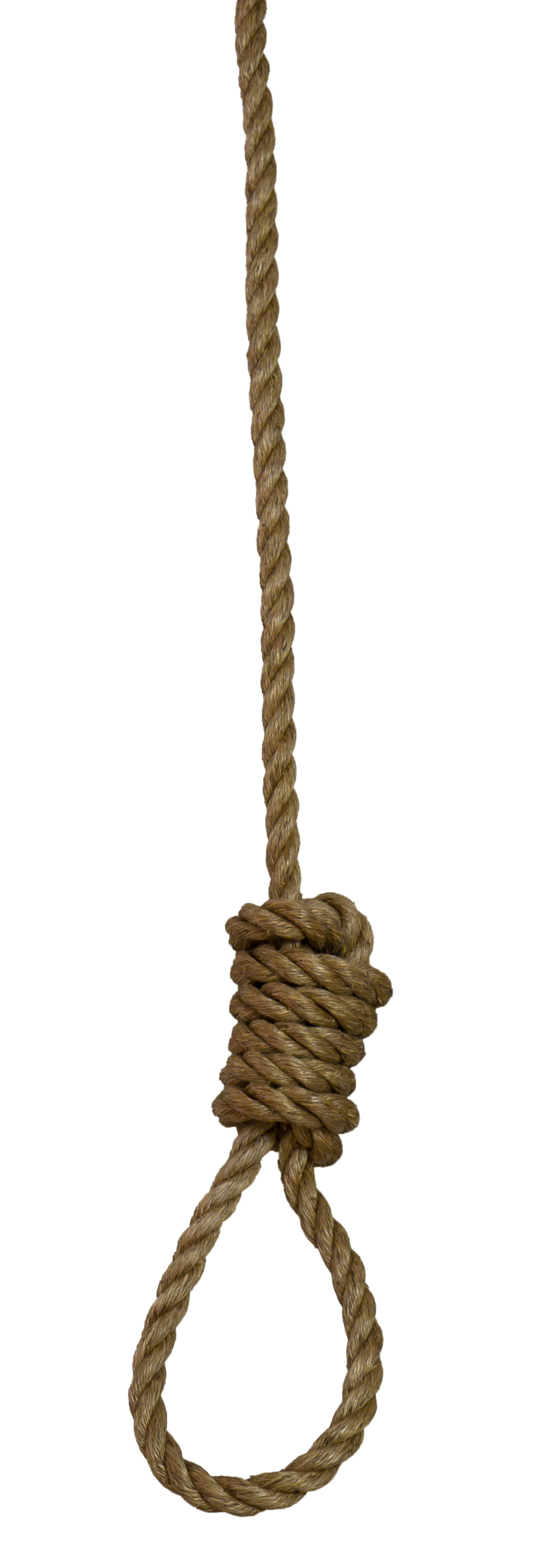 Gallery images and information: Rope Png