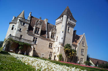 Chateau de Puymartin by DisturbedAzura