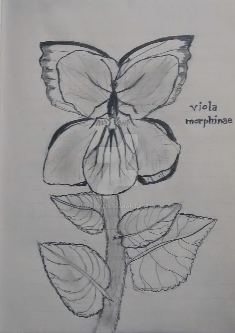 Viola Morphinae - Art Journal by ViolaCaeli