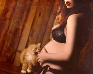Kitty Loves Baby