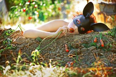 Vegetable Garden by girltripped