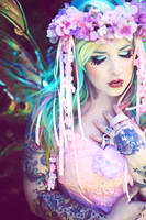 The Painted Fairy
