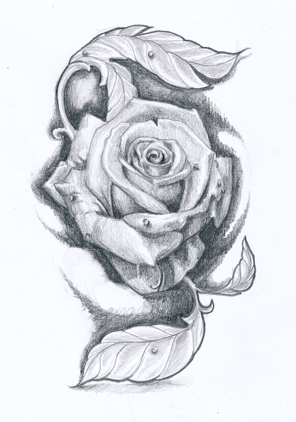 Rose tattoo design II by KlosMagda on DeviantArt