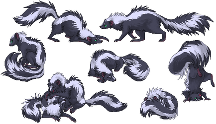 Skunk Set
