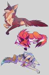 Feral YCH Results