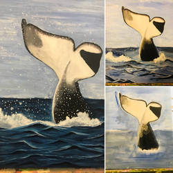 My Orca progress :) by Novae-Stardust