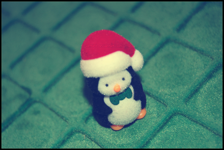 mr. penguin . . .