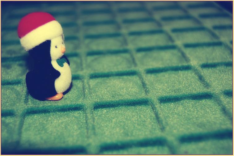 .penguin love.