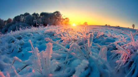 Minor Frost Major Sky by dspiridonov