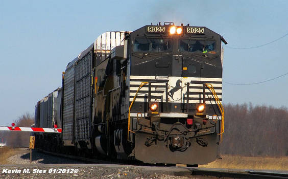 NS 9025 and NS 6515 lead NS 301