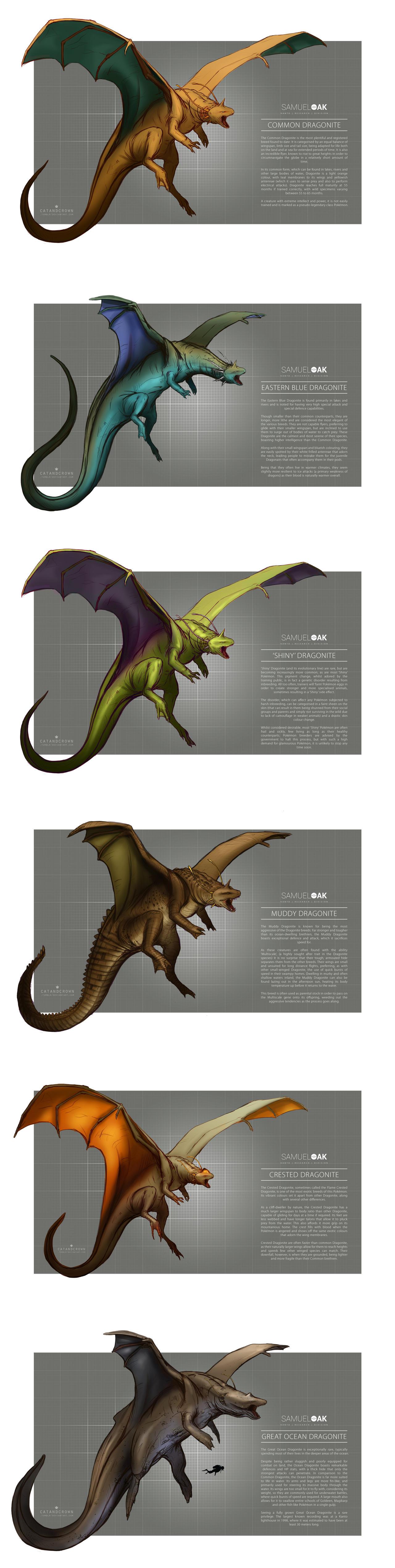 Pokemon Morphology - Dragonite by catandcrown