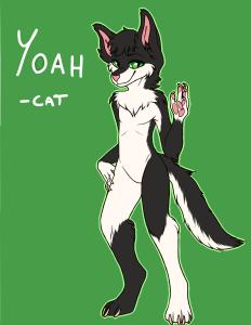 Yoah-Cat's Profile Picture