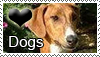 Love Dogs Stamp by PetLovers