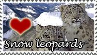 Snow Leopards Love Stamp