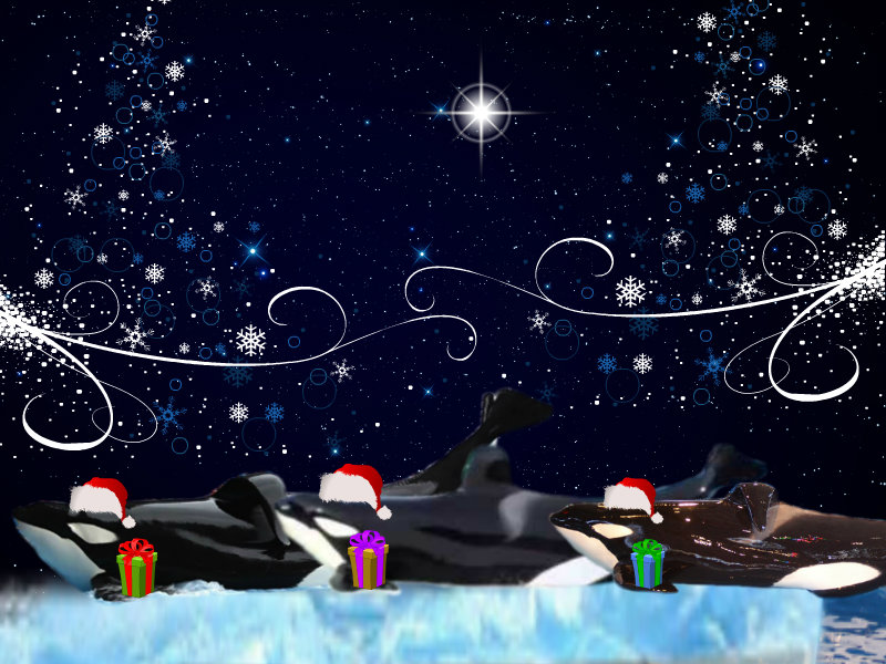 We Three Kings by Orca2013