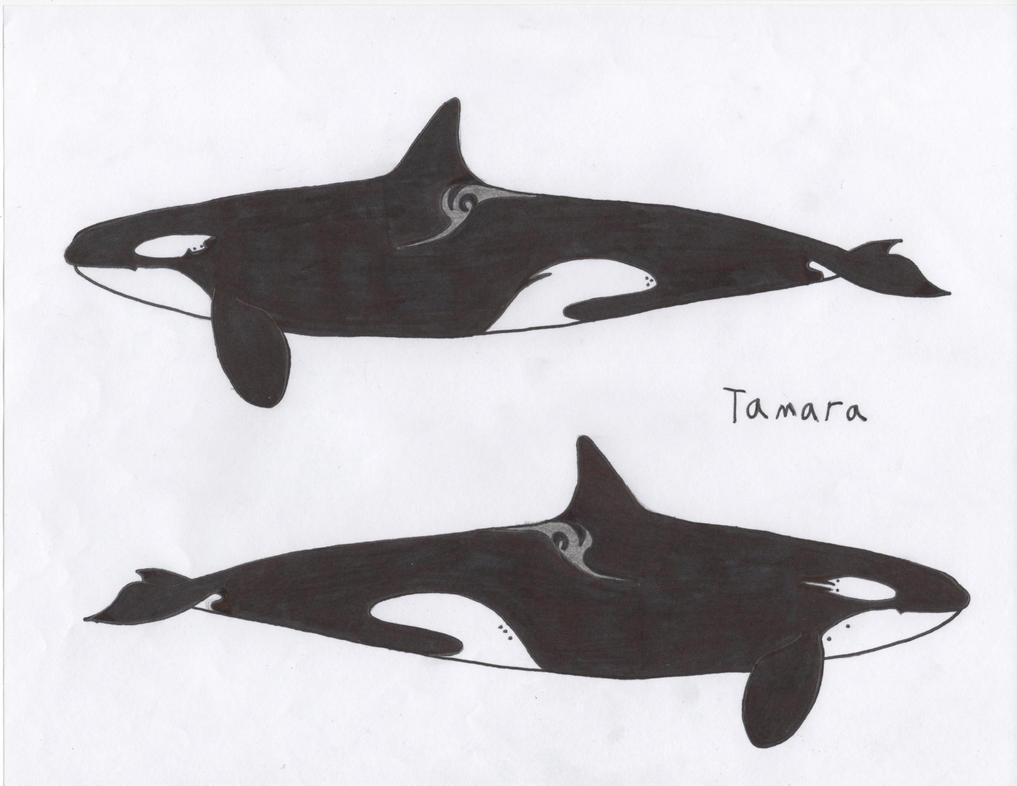Tamara by Orca2013
