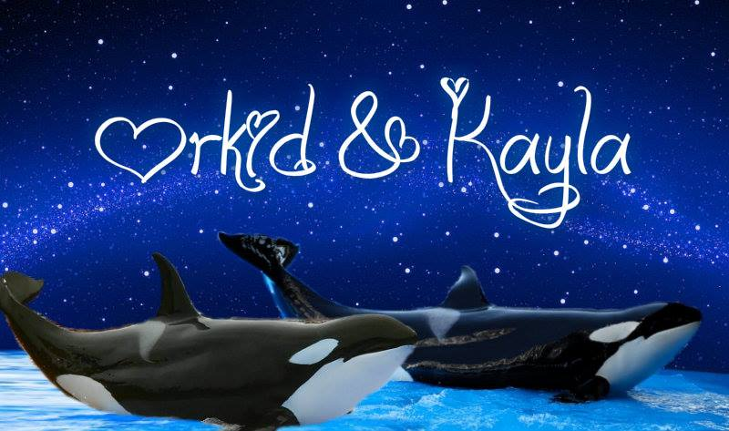 Orkid And Kayla by Orca2013