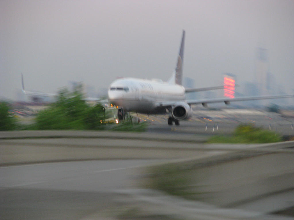 United 737-800 by Orca2013