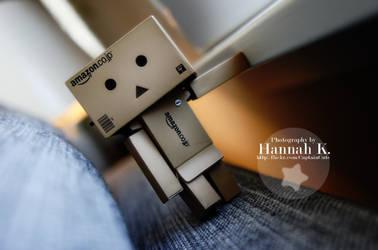 My danbo Dennis by HannahKoller