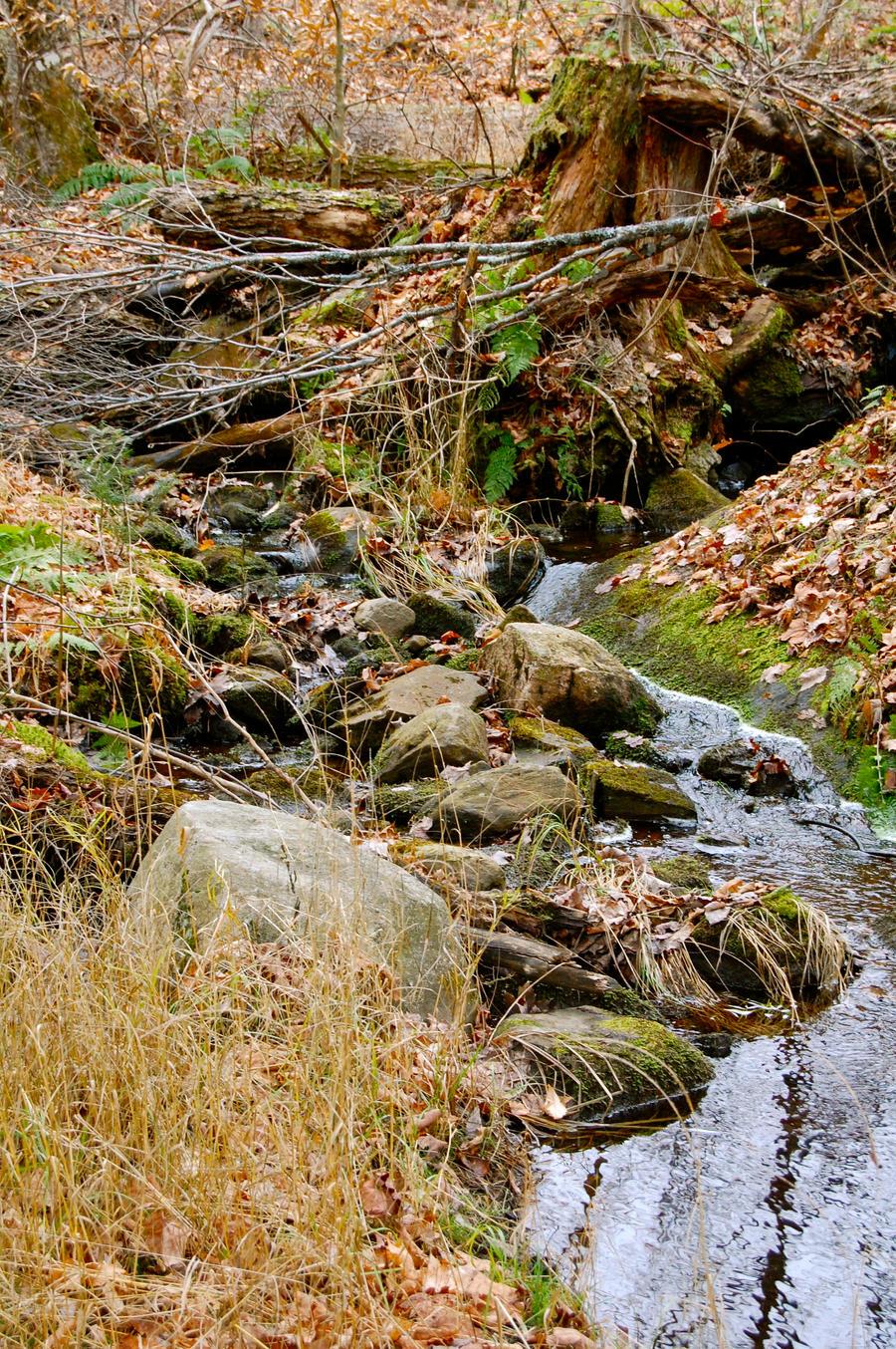Creek by odhinnsrunes