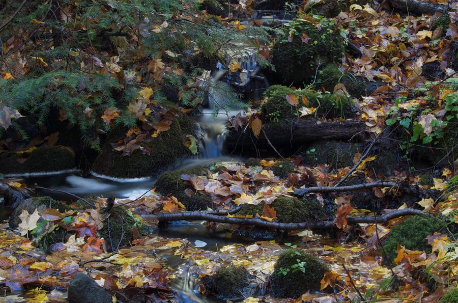 Tiny Waterfall by odhinnsrunes